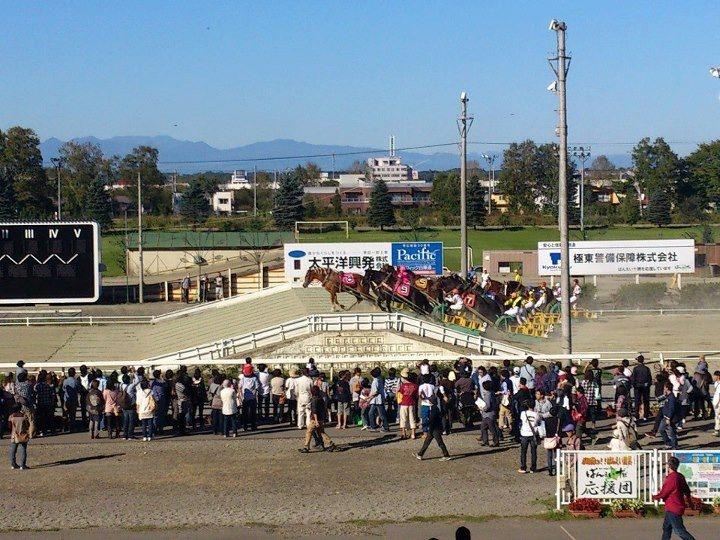 Ban Ei Horses (hokkaidolikers