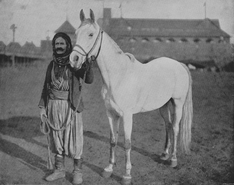 Arap-Urfacostime