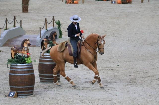 img_0357 (equestrianlifestyleblog