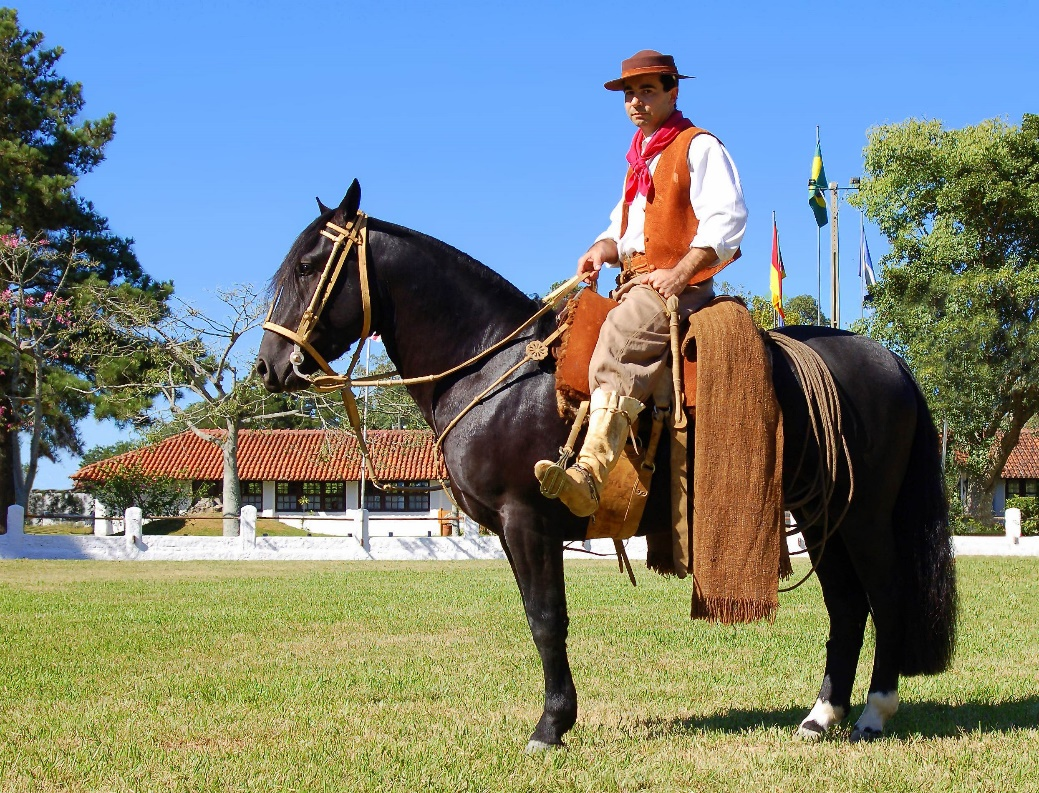 Arjantin Criollo - Gaucho (flickr