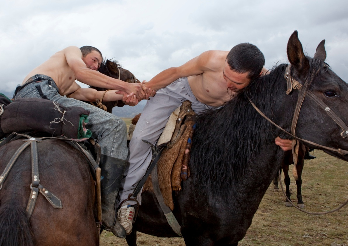 horse-wrestling2
