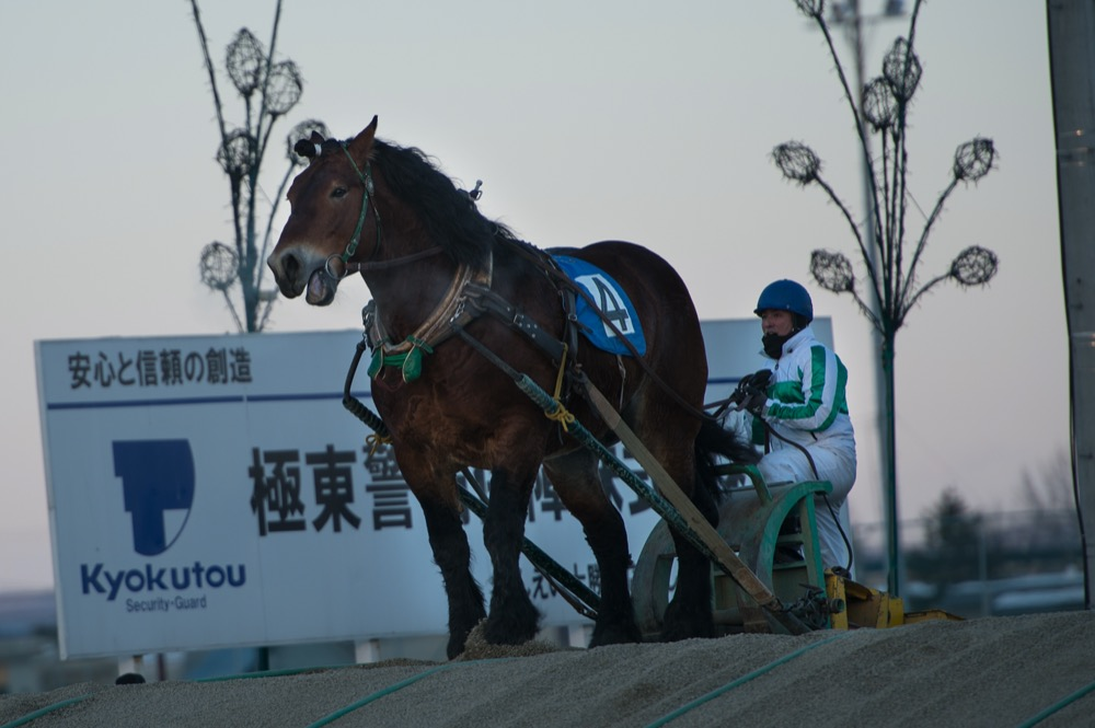 Ban Ei Horses (flickr