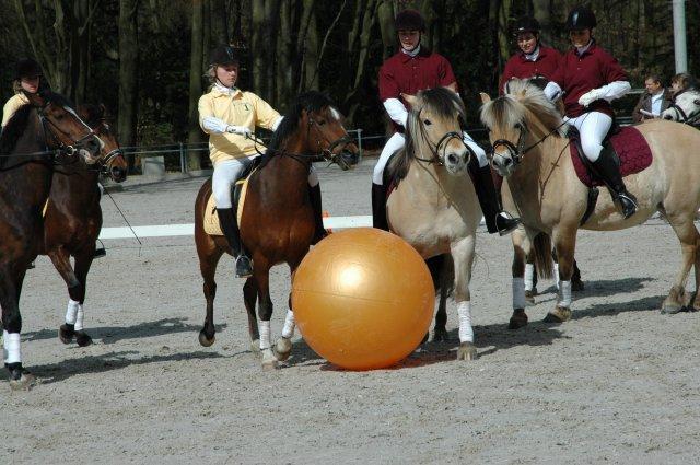 Horse Pushball 9