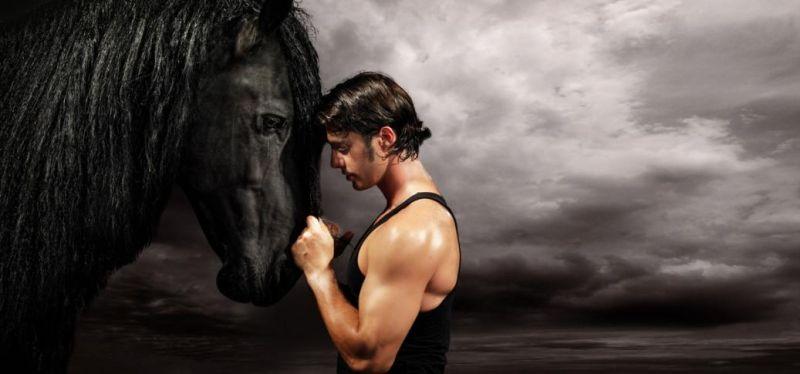 horse-evolution-artistes