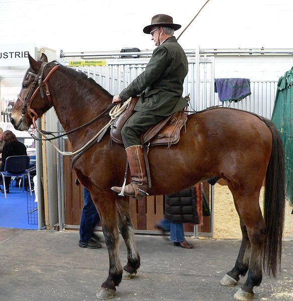 Marmemmano Horse (it