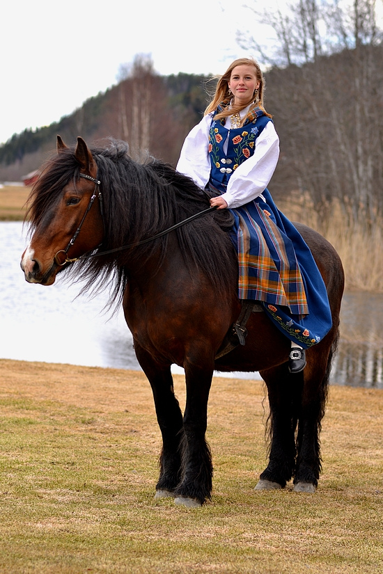 Dola Horse (hest