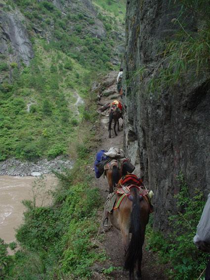 Tea_and_Horse_Caravan_Road (chinaculture